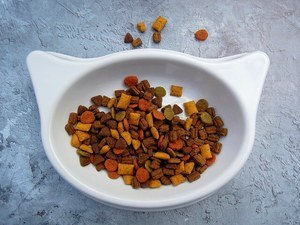 image of the bowl of kitty chow