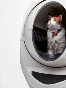 The best self cleaning litter box