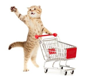 Picture of cat with shopping cart isolated on white