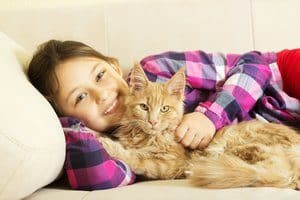 child hugging a kitten isolated on white background